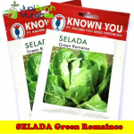 Benih Selada Green Romaine (Known You Seed)