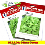 Benih Selada Olivia Green (Known You Seed)
