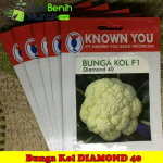 Benih Bunga Kol Diamond 40 F1 (Known You Seed)