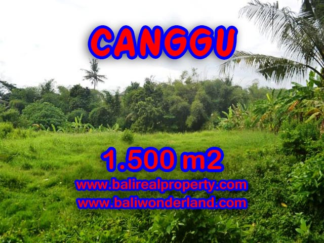 Jual tanah di Bali 1,500 m2 di Canggu pererenan