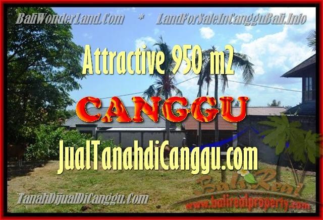 TANAH MURAH DIJUAL di CANGGU BALI Untuk INVESTASI TJCG153