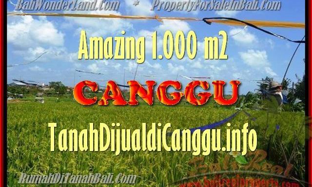 JUAL TANAH di CANGGU BALI 1.000 m2 di Canggu Kayutulang