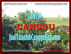 DIJUAL MURAH TANAH di CANGGU BALI Untuk INVESTASI TJCG143