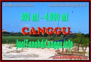 JUAL TANAH di CANGGU 300 m2 View Sawah
