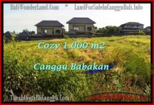 TANAH DIJUAL di CANGGU BALI 1,000 m2  View sawah link villa