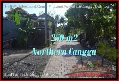 TANAH MURAH di CANGGU BALI DIJUAL 250 m2 di Canggu Pererenan