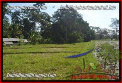 TANAH MURAH di CANGGU JUAL 4.3 Are View sawah dan sungai, gunung link villa