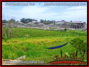 TANAH di CANGGU BALI DIJUAL MURAH 14,5 Are view sawah, laut dan gunung