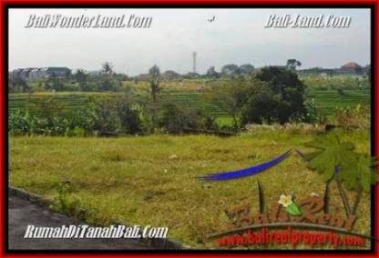 TANAH DIJUAL di CANGGU BALI 300 m2 View sawah lingkungan villa