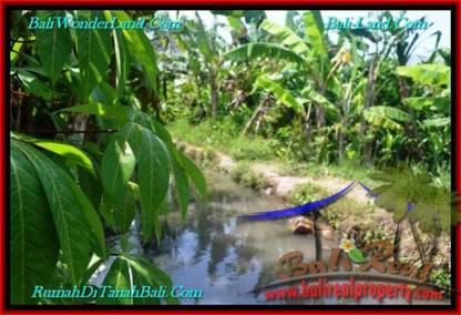 JUAL TANAH MURAH di CANGGU BALI 1,100 m2 View sawah, lingkungan villa