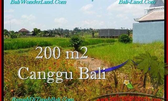 DIJUAL TANAH MURAH di CANGGU BALI 200 m2 di Canggu Pererenan
