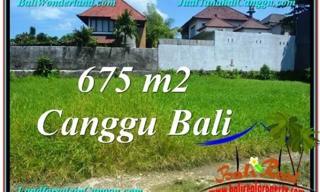 JUAL MURAH TANAH di CANGGU BALI 675 m2 di Canggu Brawa