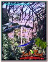 TANAH MURAH di CANGGU 1,125 m2 di Canggu Pererenan