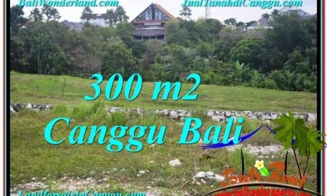 TANAH di CANGGU JUAL 300 m2 View sawah lingkungan villa