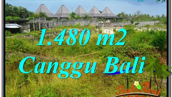 TANAH MURAH di CANGGU JUAL 14.8 Are View sawah lingkungan villa
