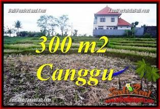 TANAH di CANGGU DIJUAL Untuk INVESTASI TJCG230