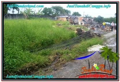 JUAL TANAH MURAH di CANGGU BALI 9 Are View sawah lingkungan villa