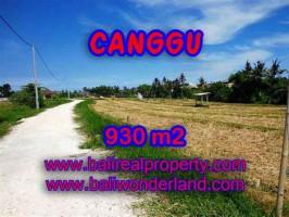 DIJUAL TANAH di CANGGU Untuk INVESTASI TJCG146