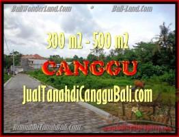 JUAL TANAH MURAH di CANGGU 510 m2 di Canggu Pererenan