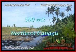 JUAL TANAH di CANGGU BALI 500 m2  View sawah link villa