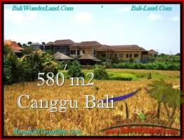 JUAL TANAH di CANGGU 5.8 Are View sawah, lingkungan villa