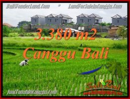 JUAL MURAH TANAH di CANGGU BALI 3,380 m2  View sawah, lingkungan villa