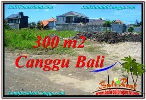 TANAH JUAL MURAH  CANGGU BALI 3 Are Lingkungan villa & Hotel