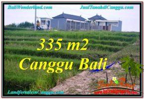 TANAH MURAH di CANGGU 335 m2  View sawah, sungai, lingkungan villa