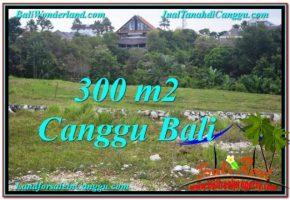 TANAH MURAH di CANGGU BALI 300 m2  View sawah lingkungan villa