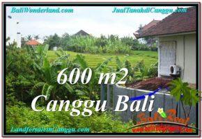 TANAH di CANGGU DIJUAL 600 m2  View sawah lingkungan villa