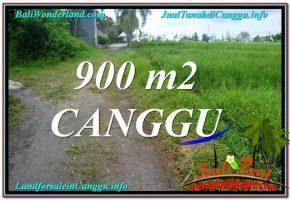 TANAH DIJUAL di CANGGU 9 Are View sawah lingkungan villa