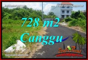 JUAL TANAH MURAH di CANGGU BALI 728 m2  VIEW SAWAH, LINGKUNGAN VILLA