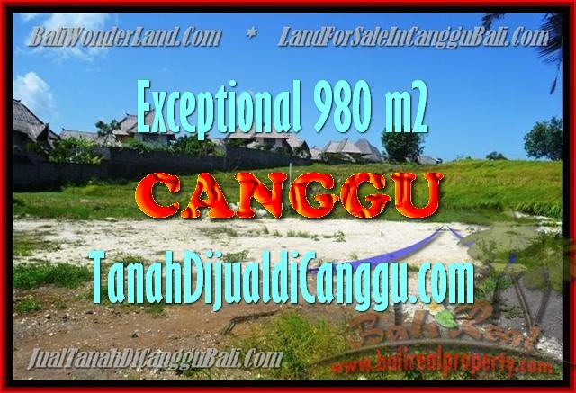 JUAL MURAH TANAH di CANGGU BALI 980 m2 View Sawah, Sungai dan laut