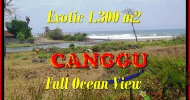 TANAH MURAH JUAL di CANGGU BALI 1.300 m2 View sawah dan laut lingkungan villa