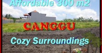 TANAH DIJUAL di CANGGU BALI 3 Are View Sawah, sungai,lingkungan villa