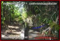 DIJUAL TANAH di CANGGU Untuk INVESTASI TJCG183