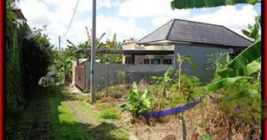 JUAL MURAH TANAH di CANGGU 312 m2 View kebun di lingkungan villa