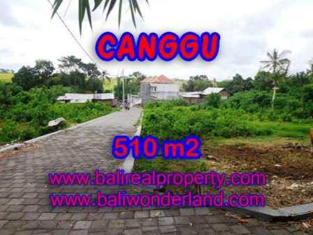 JUAL MURAH TANAH di CANGGU BALI 5,1 Are View Sawah