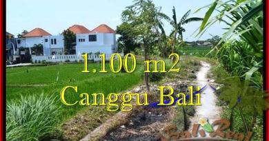 TANAH DIJUAL di CANGGU BALI TJCG193
