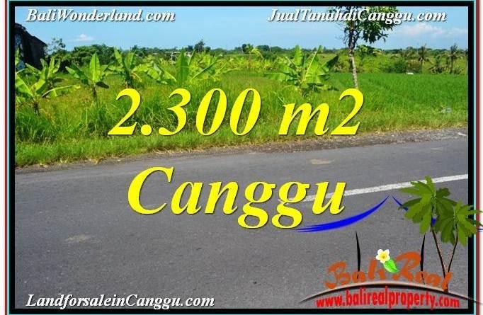 TANAH DIJUAL di CANGGU Untuk INVESTASI TJCG209