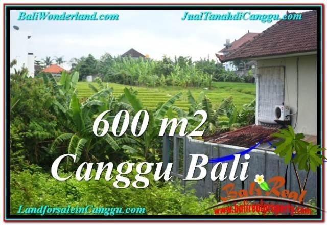 JUAL TANAH MURAH di CANGGU BALI 6 Are View sawah lingkungan villa