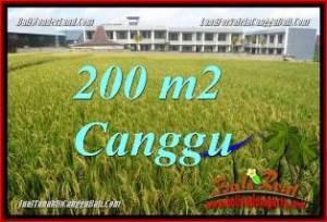 TANAH MURAH di CANGGU BALI DIJUAL Untuk INVESTASI TJCG229