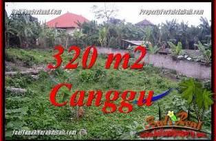 JUAL TANAH di CANGGU 320 m2 di CANGGU PERERENAN