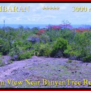 TANAH DIJUAL MURAH di JIMBARAN BALI 3.000 m2 di Jimbaran Ungasan