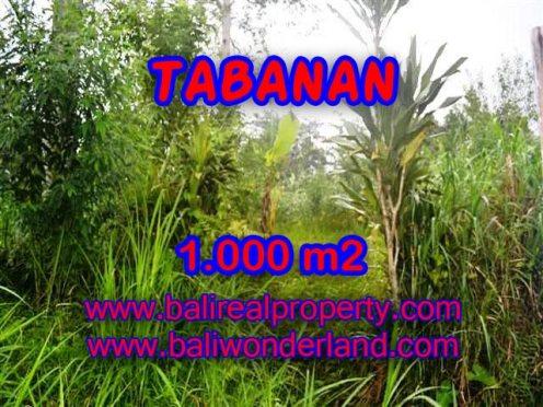 TANAH MURAH DIJUAL DI TABANAN BALI TJTB104 - PELUANG INVESTASI PROPERTY DI BALI