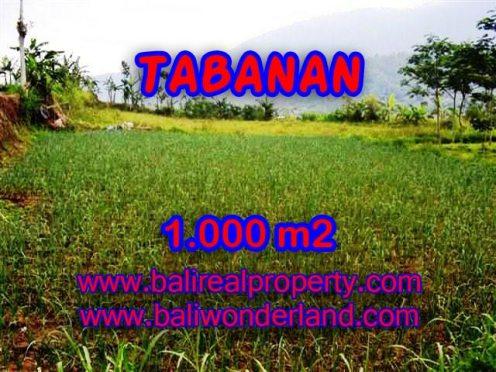 TANAH DI TABANAN MURAH DIJUAL TJTB101 - INVESTASI PROPERTY DI BALI