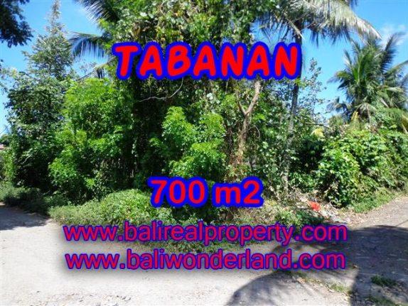 TANAH DI TABANAN MURAH DIJUAL TJTB107 - INVESTASI PROPERTY DI BALI