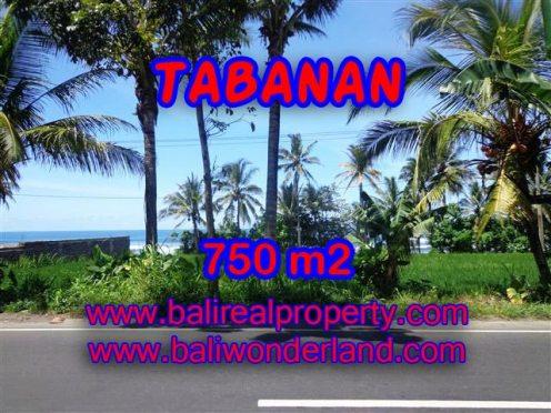 TANAH DIJUAL DI TABANAN MURAH RP 1.550.000 / M2 - TJTB105