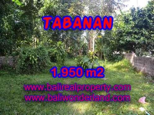 INVESTASI PROPERTI DI BALI - TANAH DIJUAL DI TABANAN CUMA RP 1.650.000 / M2