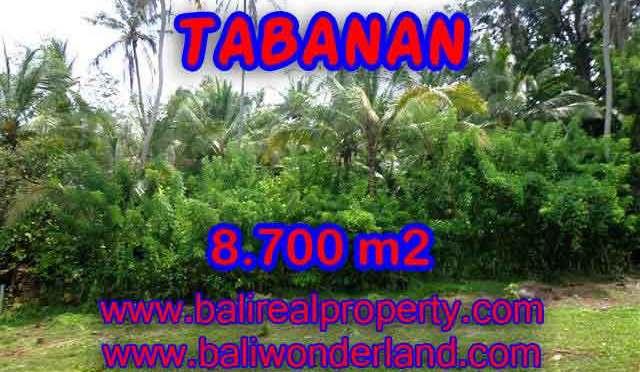 INVESTASI PROPERTI DI BALI - TANAH DIJUAL DI TABANAN BALI MURAH TJTB115